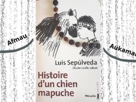 Livre jeunesse Histoire d'un chien mapuche