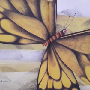 Un papillon, album